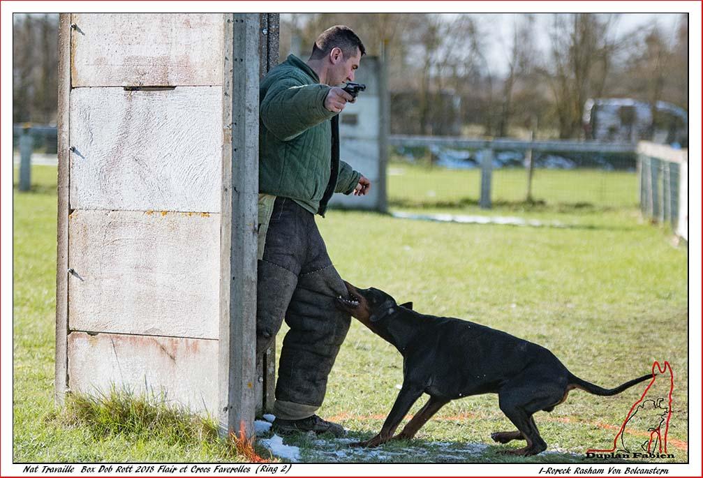 i-roreck-rasham-von-bolcanstern-113600pts-rolland-k---1045-94_40227131381_o