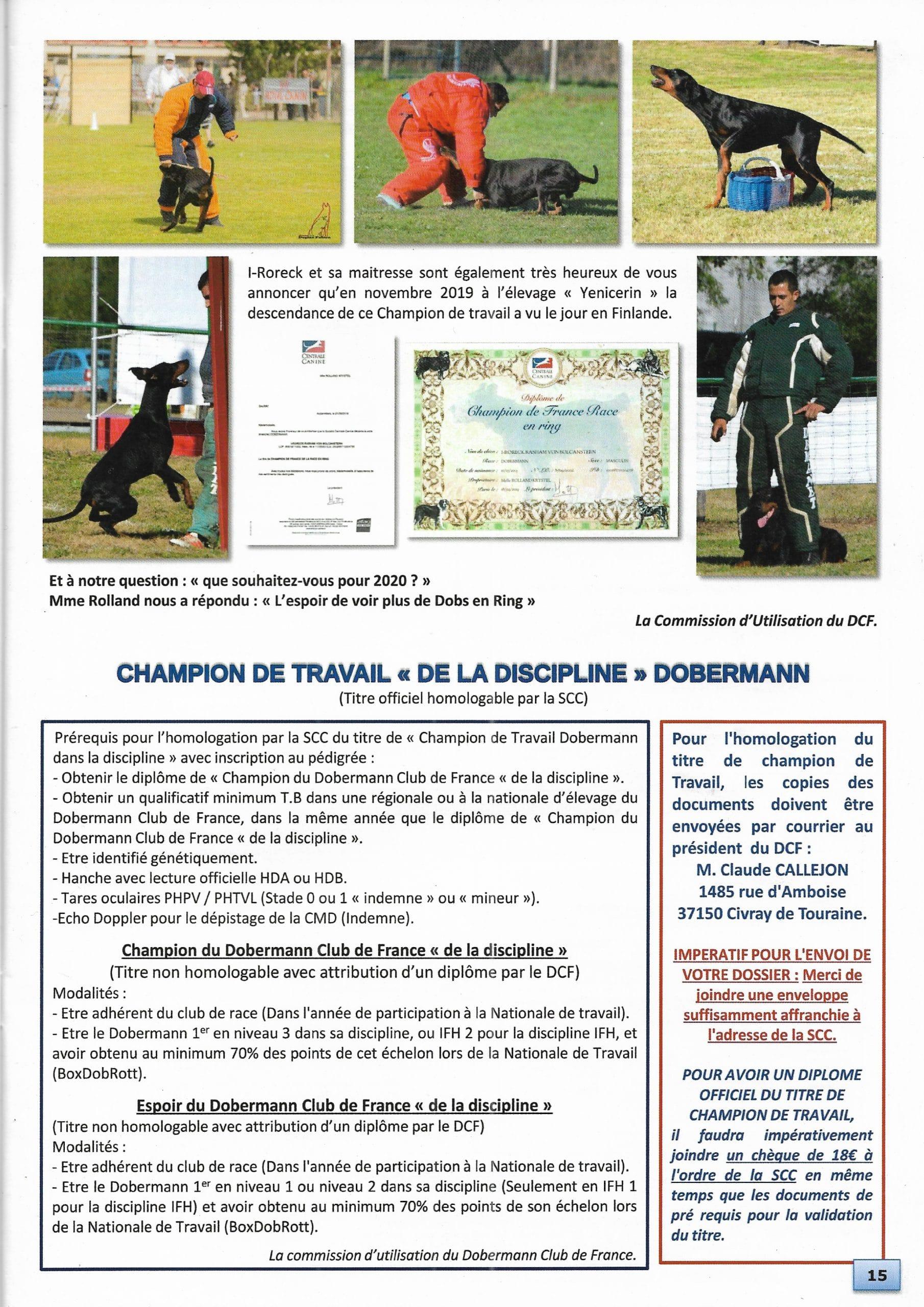 Champion de France Dobermann I-Roreck Rasham von Bolcanstern
